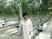 高知県のトマト工場視察